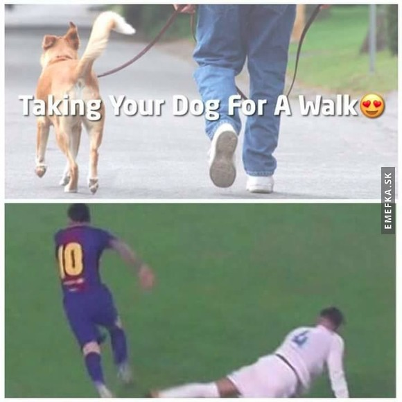 Taking dog for a walk