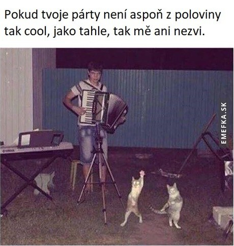 cool party